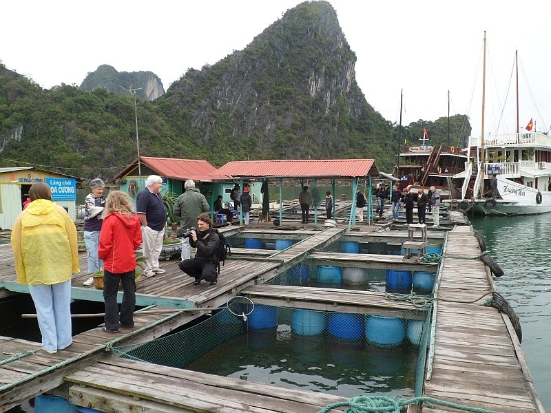 Visiting Pearl Farm Village with Alisa Cruise